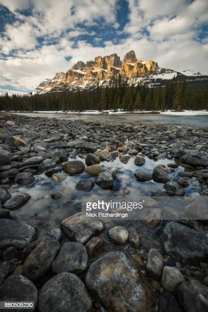 light on castle mountain viewed from the bow river bed near castle junction, banff national park, alberta, canada - castle mountain stock photos and pictures
