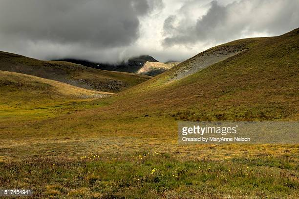 Light on Continental Divide by Stony Pass