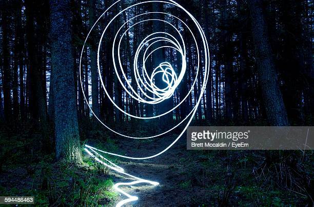 Light Painting Amidst Trees In Forest At Night