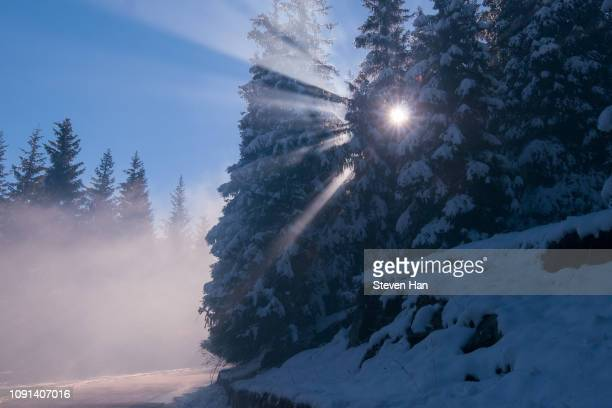 light phenomenon after a heavy snow in the morning - light natural phenomenon stock photos and pictures