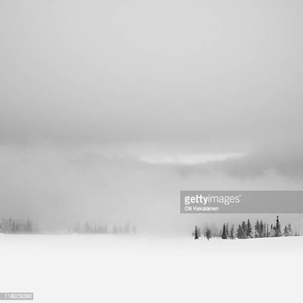 light phenomenon - light natural phenomenon stock pictures, royalty-free photos & images