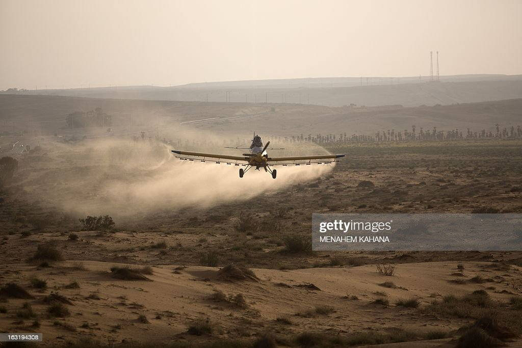 A light plane sprays pesticides at a hill as it fights a swarm of locusts on March 6, 2013 in the Israeli village of Kmehin in the Negev Desert near the Egyptian border. According the UN Food and Agriculture Organization (FAO) a swarm of tens of millions of locusts has overtaken Egyptian desert land in the past few days and is heading to the Gaza Strip, Israel and Jordan