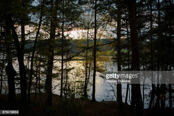 Light shines through a forest In the background a dam on November 02 2017 in Heyda Germany