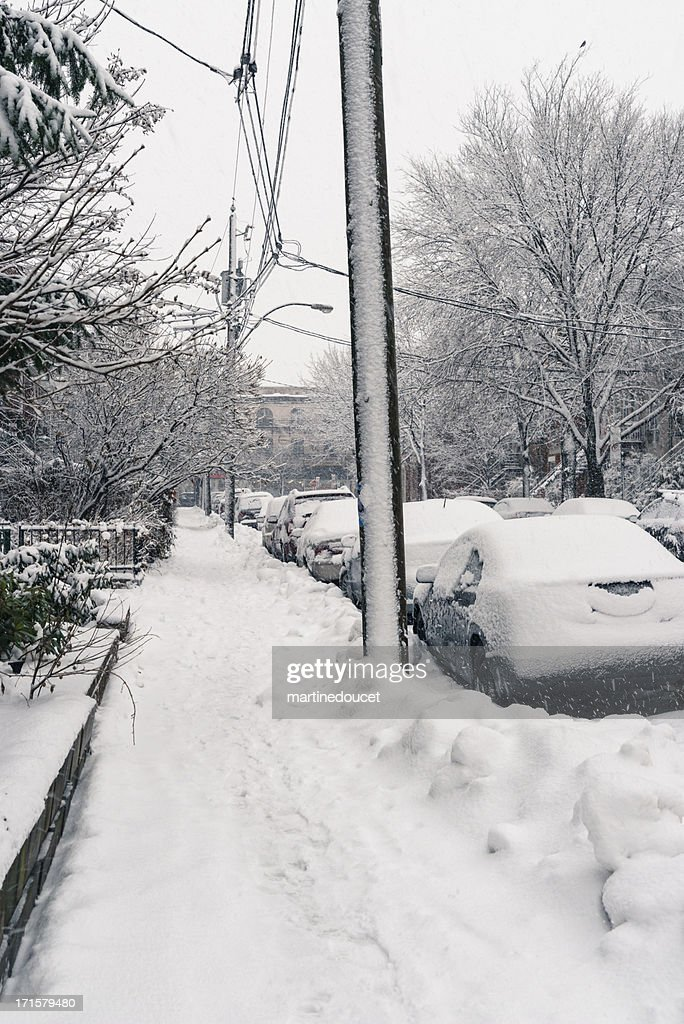Light snowstorm on a small city street, vertical. : Stock Photo