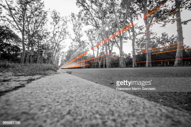 light trails in Treptower park, Berlin, Germany
