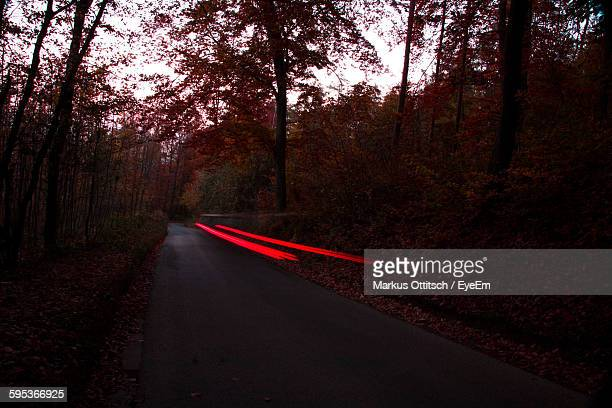 Light Trails On Road In Forest During Sunset