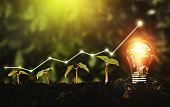 Lightbulb is located on the soil, and plant are growing.Renewable energy generation is essential in the future.