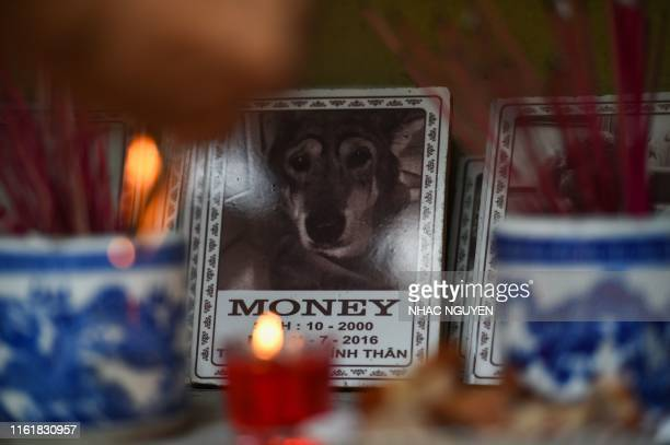 Lighted candles and incense are placed before a plaque of a dog at Te Dong Vat Nga pagoda which means all lives are equal a cemetary for pets in...