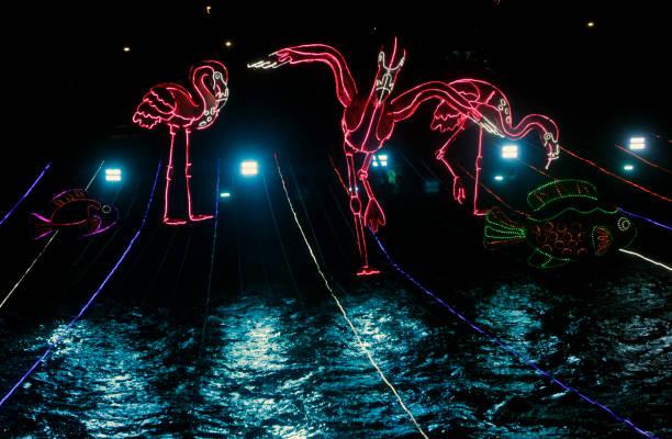 COL: Medellin Christmas Lighting