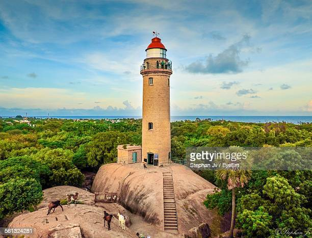 lighthouse amidst trees against sky - chennai stock pictures, royalty-free photos & images