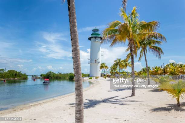 lighthouse and palm trees in idyllic white sand beach in the caribbean sea in a sunny day, belize. - harvest caye stock pictures, royalty-free photos & images