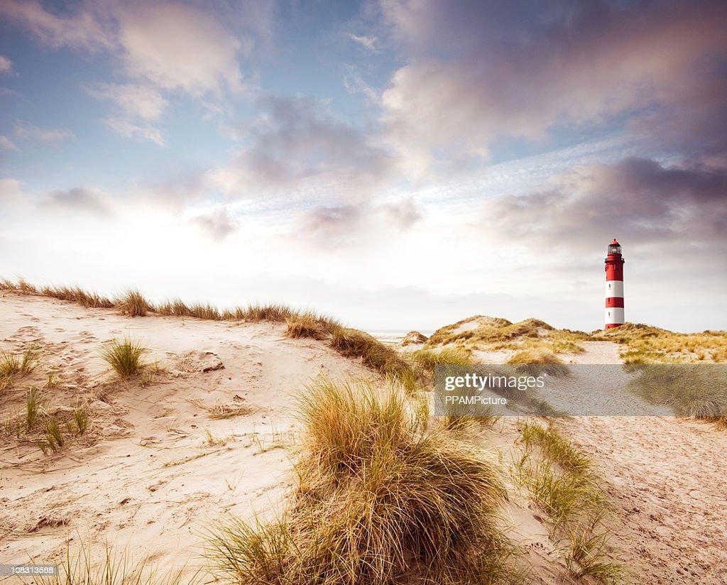 Leuchtturm in den Dünen : Stock-Foto