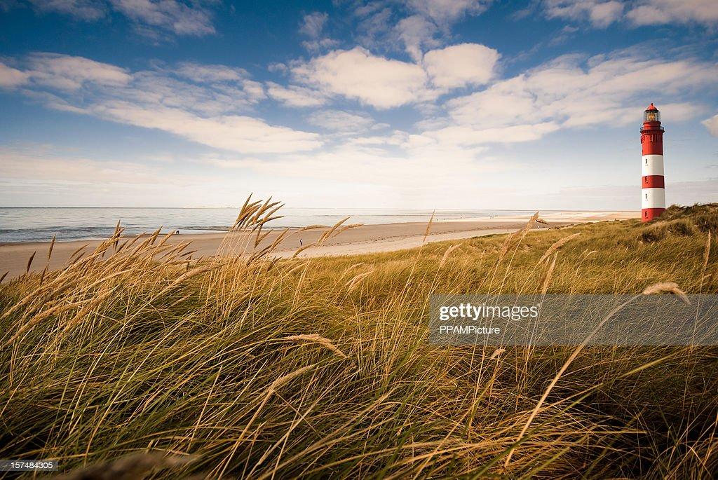 Lighthouse in the dunes : Stock Photo
