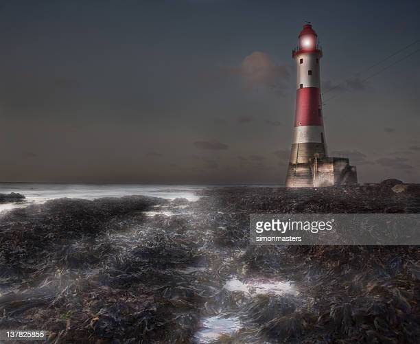 lighthouse in the mist - beachy head stock photos and pictures