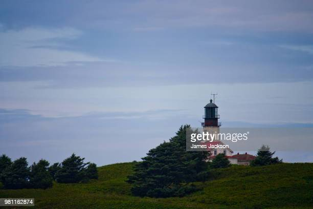 lighthouse off the coast of cape flattery - cape flattery stock photos and pictures