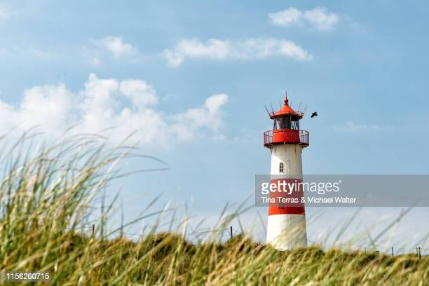 "lighthouse on the beach of sylt. ""ellenbogen"" - lighthouse stock pictures, royalty-free photos & images"