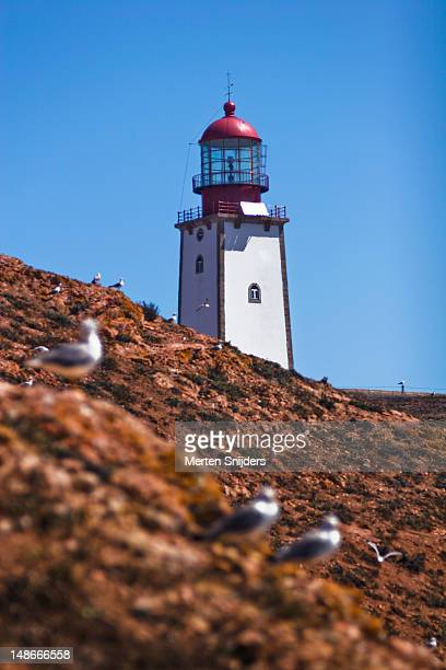lighthouse. - merten snijders stockfoto's en -beelden
