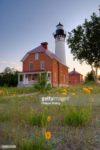 lighthouse with yellow flower in the foreground; michigan united states of america - pictured rocks national lakeshore stock pictures, royalty-free photos & images