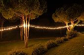 lighting decor tree