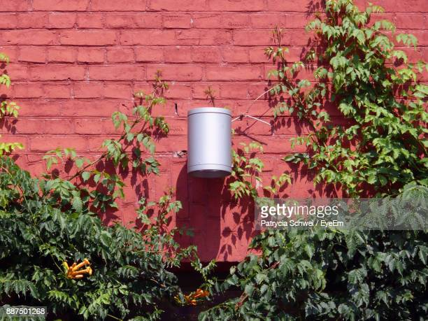 Lighting Equipment On Red Brick Wall Amidst Plants