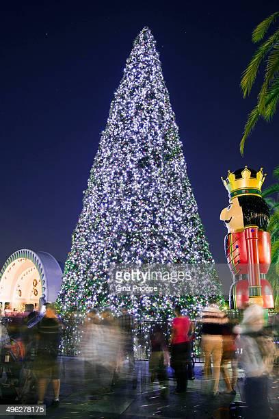 Lighting up the Christmas tree lights in Eola Park, Orlando, Florida, January 7, 2013.