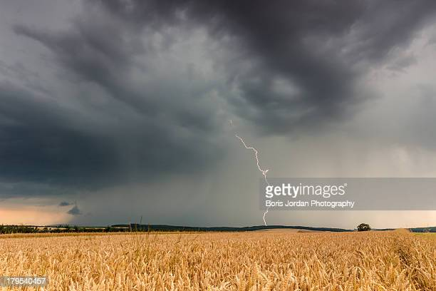 lightning strike - boris stock photos and pictures