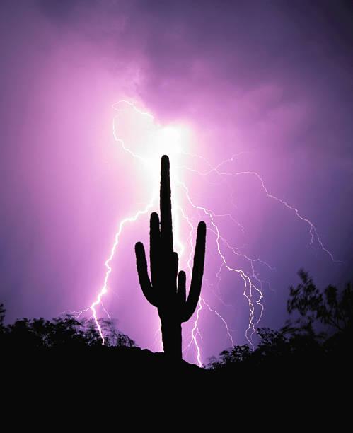 lightning strikes 3