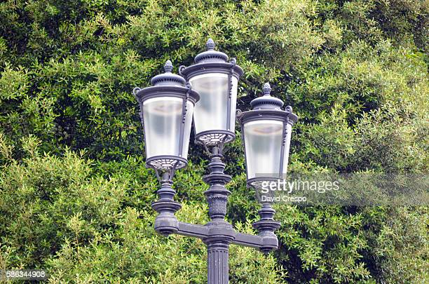 lightpost in a park - maryland us state stock pictures, royalty-free photos & images