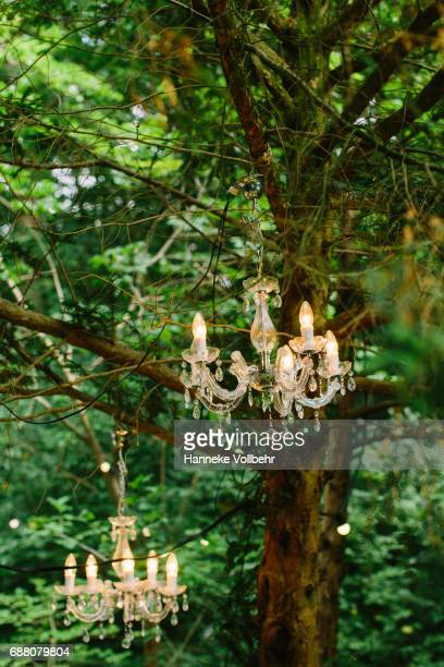 Lights in trees as wedding decoration