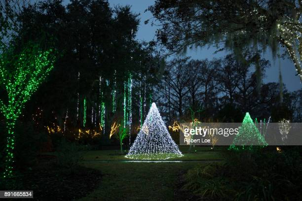 lights of the garden - file:myrtle_beach,_south_carolina.jpg stock pictures, royalty-free photos & images