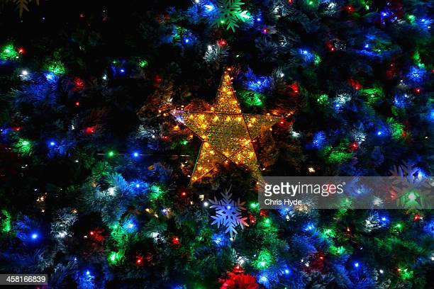 Lights shine on a 20m solarpowered Christmas tree in King George's Square on December 20 2013 in Brisbane Australia Brisbane's annual lighting of the...