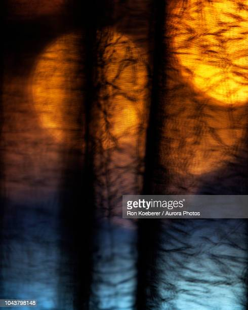 lights shining behind window curtain - koeberer stock photos and pictures