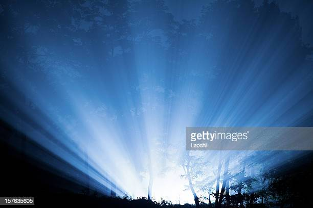 lights through mist - brightly lit stock pictures, royalty-free photos & images