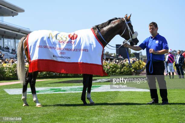 Lightsaber after winning the MSS Security Sires' Produce Stakes at Flemington Racecourse on March 06, 2021 in Flemington, Australia.