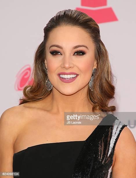 Ligia Uriarte attends the 17th Annual Latin Grammy Awards on November 17 2016 in Las Vegas Nevada