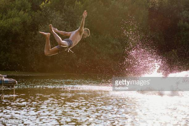 like a bird - diving into water stock pictures, royalty-free photos & images