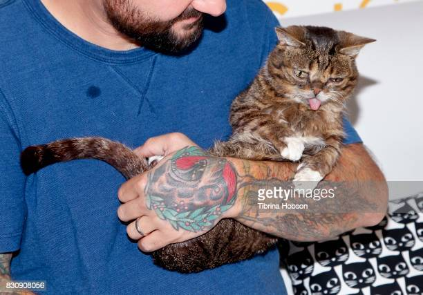 Lil Bub attends the 3rd Annual CatCon at Pasadena Convention Center on August 12 2017 in Pasadena California