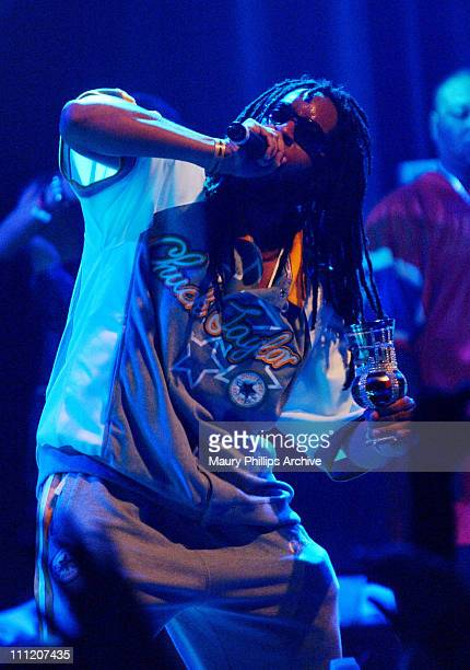 Lil Jon during Lil Jon and The Eastside Boyz Live at The House of Blues at House of Blues in Hollywood California United States