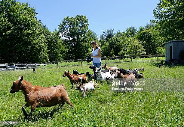 Lila Hall walks through a field with her family's goats A video that she made with her sister Tess of them running with the baby goats has become a...
