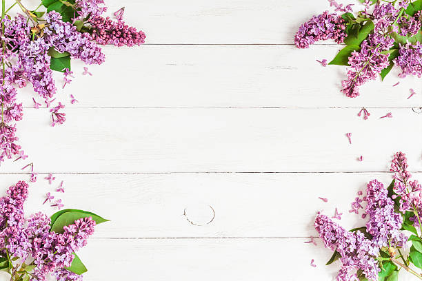 Fondo De Madera Rosa Con Flores Moradas: Free Purple Flowers On Wood Background Images, Pictures