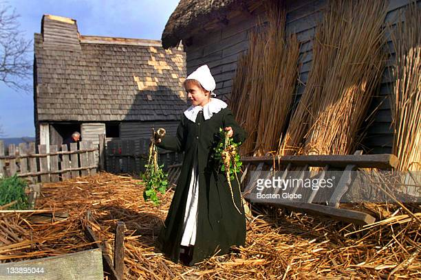 Lilia Hall who plays Pilgrim Hester Cooke gathers some parsnips in a garden behind her home at Plimoth Plantation The attraction was filled with...