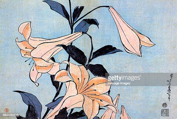Lilies c1830 Hokusai Katsushika Found in the collection of the State A Pushkin Museum of Fine Arts Moscow