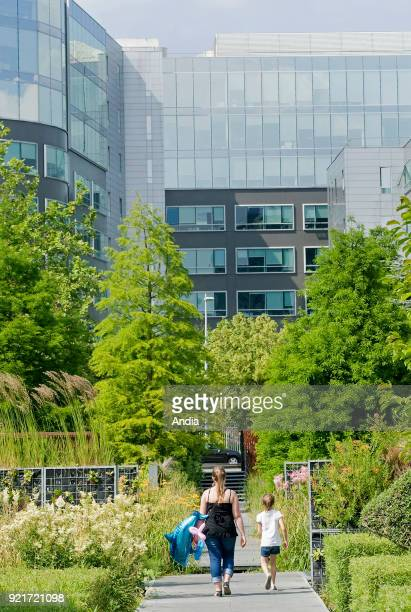 the Garden of the Giants in the business district Garden greenery and office building facade