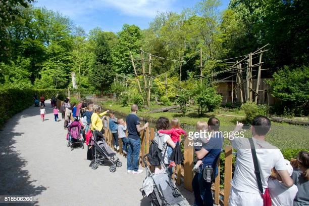 tourists visiting the zoological park