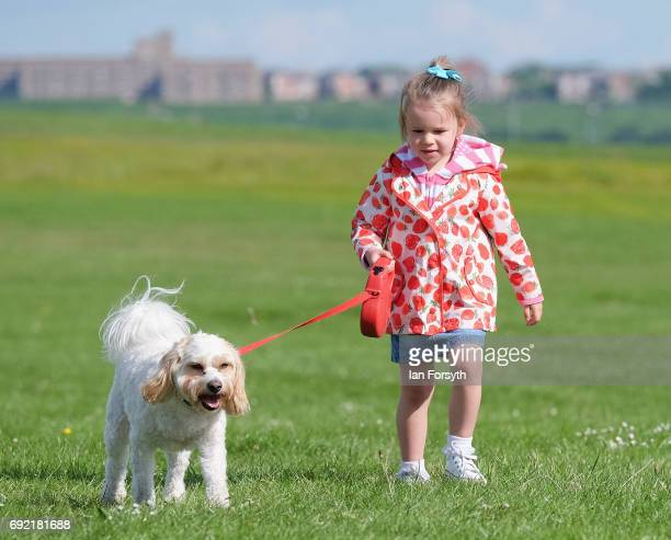 Lilly LeeMartin and her dog Theo from Hebburn join thousands of owners and their dogs as they take part in the Great North Dog Walk on June 4 2017 in...