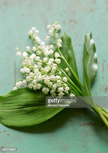 Lily of the valley bouqet on green background