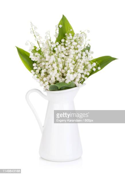lily of the valley - bouquet de muguet fotografías e imágenes de stock