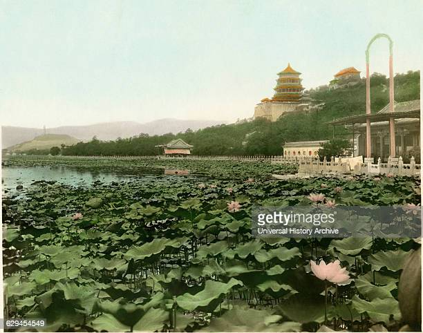 Lily Pond Summer Palace Beijing China circa 1930