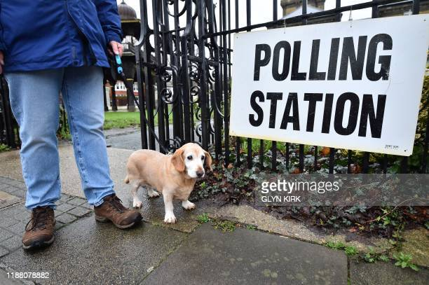 Lily the dachshund stands at the entrance of a polling station at the Hove Museum and Art Gallery in Brighton and Hove southeast England as Britain...