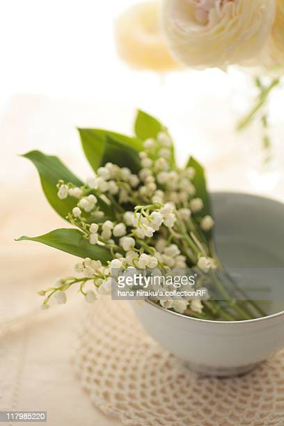 Lily-of-the-valley in a bowl